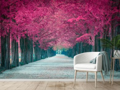 Pink tree tunnel in in South Korea