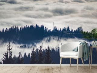 Carpathian mountains in the waves of fog
