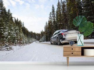 Electric car driving, mountains snow