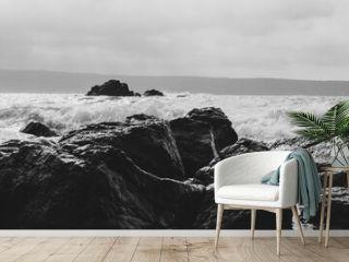 sea coast with black and white stones and seascape. black and white wavy sea