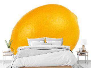 One lemon isolated on white background.
