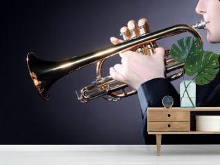 Trumpet player playing jazz music instrument. Brass Trumpeter hands closeup