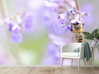 close up of bee on lavender flowers