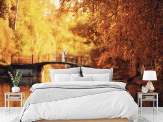 sunny landscape in fall park, autumn season background orange park