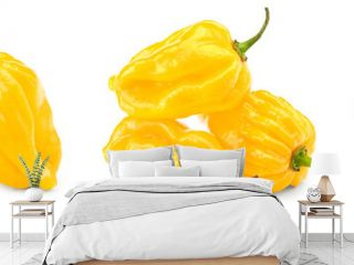 Habanero chili yellow hot pepper isolated on white background. clipping path