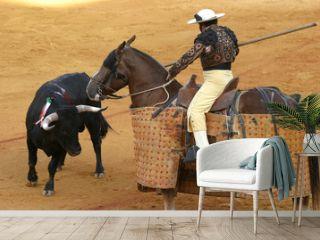 bullfighting in sevilla