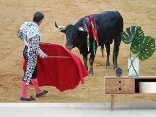 bullfighting in seville