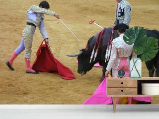 killing the bull