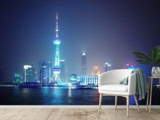 Economic Center of China - Night of Shanghai