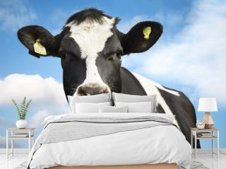 Cow against blue sky
