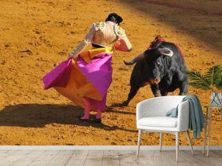 Corrida - Torero dancing with the Bull