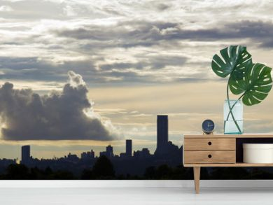 Silhouette of the Johannesburg skyline.