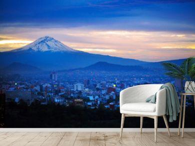 Night View of Mexico City Mountain