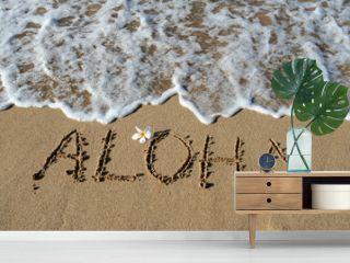 Aloha in Sand, Hawaii, USA