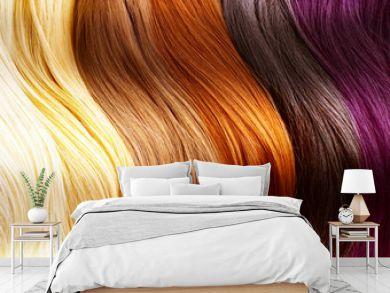 Hair Colors Palette