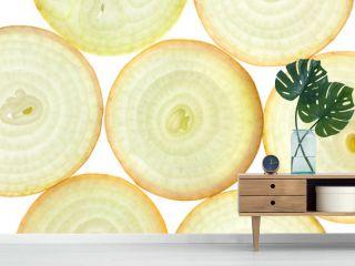 Slices of fresh Onion / background / back lit
