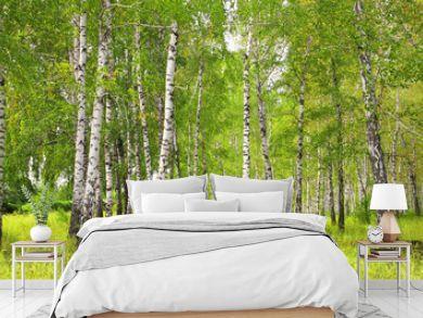 Birchs
