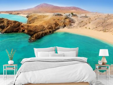 Lanzarote Papagayo turquoise beach and Ajaches