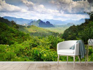 Rainforest of Khao Sok National Park in Thailand