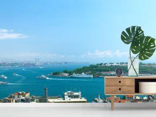 Panoramic view to Istanbul, Turkey.