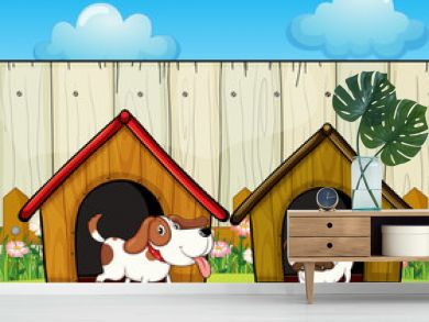Wooden doghouses inside the wooden fence