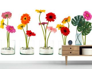 Four Gerbera flowers in a crystal flower pot in row isolated