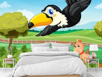 Toucan over farm