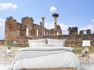 Marocco. Sito romano di Volubilis