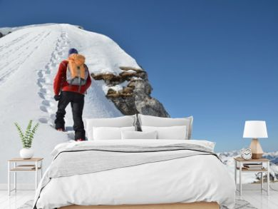 Bergsteiger,  Winter, Gipfel