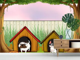 Two pets inside the fence with wooden houses