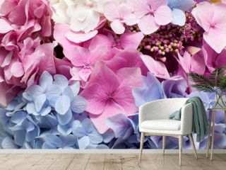 Beautiful hydrangea background