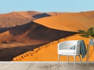 Dune landscape panorama