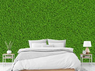 grass texture plane perpendicular