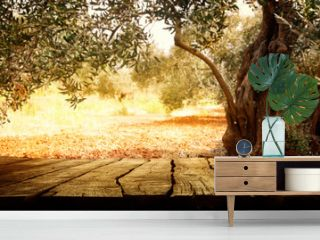 Wooden table with olive tree