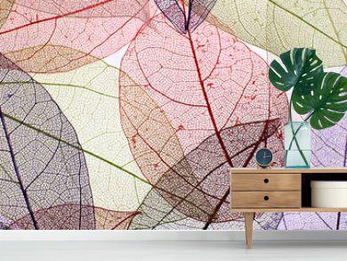 Decorative skeleton leaves background