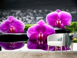 Spa still life with flowering branch of the orchid
