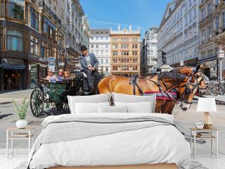 Vienna, Graben, fiaker ride