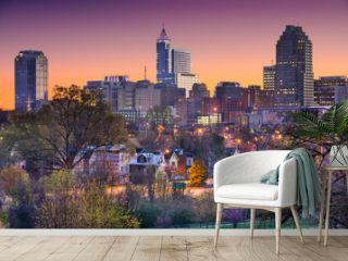 Raleigh, North Carolina, USA Skyline
