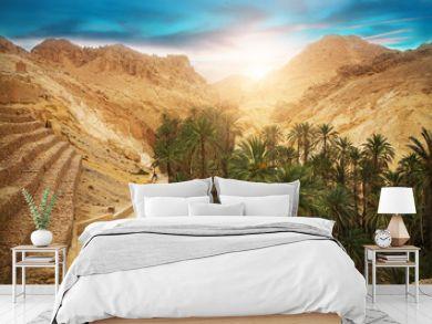 Mountain oasis Chebika, Sahara desert, Tunisia, Africa