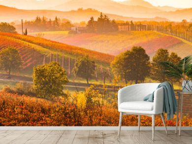 Castelvetro di Modena, vineyards in Autumn, italy