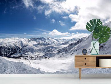 Winter mountain fir forest snowy panorama
