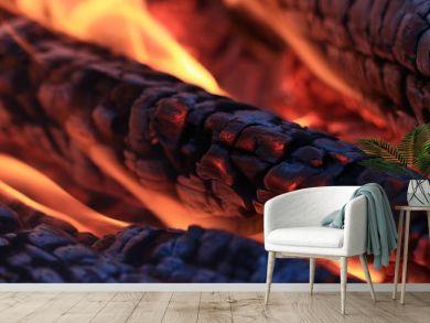 texture fire bonfire embers