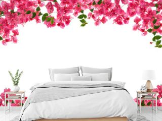 Bougainvillea flower frame on white background ,Provincial flowe