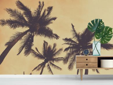 Silhouette palm tree with vintage filter (background)