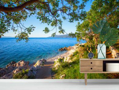 Amazing rocky beach with cristalic clean sea water with pine trees n the coast of Adriatic Sea, Istria, Croatia