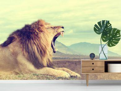Wild african lion. Vintage effect