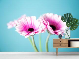 Gerbera auf einen Holztisch