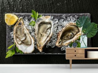 Oysters served on stone plate with ice drift