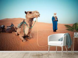 Moroccan berber watching the camel caravan at sunrise in the Sahara Desert