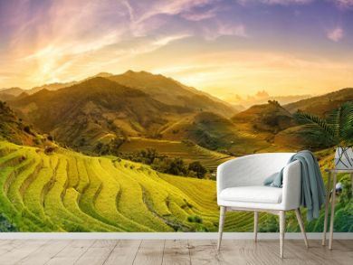 Terraced rice fields at sunset Mu Chang Chai, Yen Bai, Vietnam